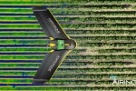 airinov drone agriculture