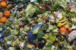 gaspillage alimentaire ademe